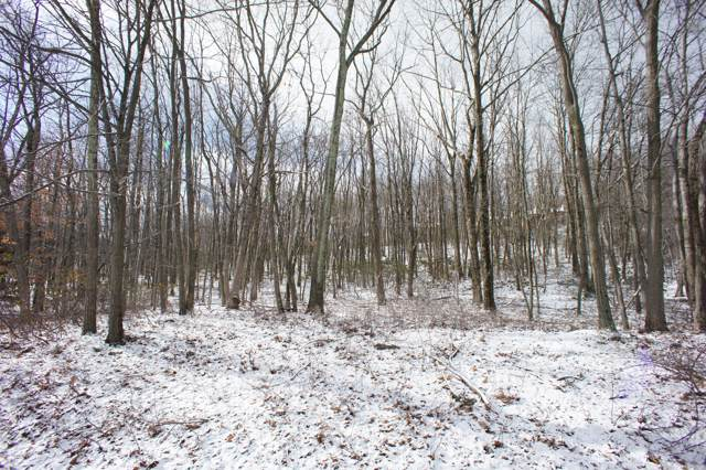 109 Lower Deer Valley Rd, Tannersville, PA 18372 (MLS #PM-54409) :: RE/MAX of the Poconos