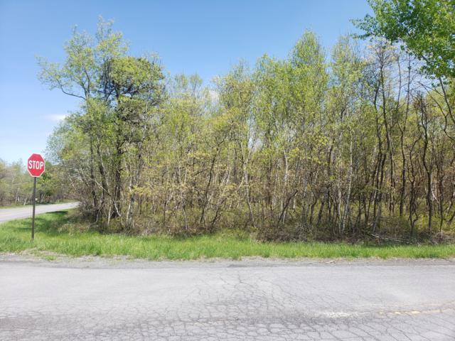 Lot 115 Sec 3 Russell Ct, Effort, PA 18330 (MLS #PM-65337) :: Keller Williams Real Estate