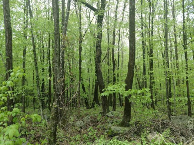 Lot 36 Pocono Forested Dr, East Stroudsburg, PA 18302 (MLS #PM-65343) :: Keller Williams Real Estate