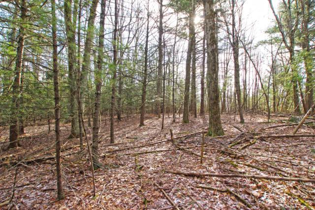 Turkey Ridge Lot #76, Kunkletown, PA 18058 (MLS #PM-65827) :: RE/MAX of the Poconos