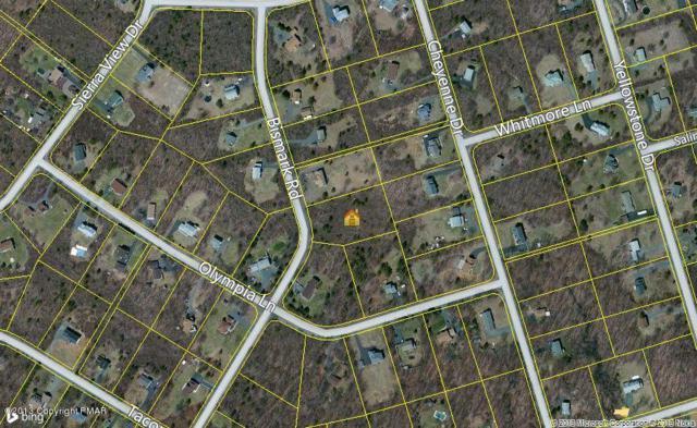115 Sec 3 Bismark Rd, Blakeslee, PA 18610 (MLS #PM-7177) :: Keller Williams Real Estate