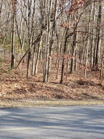 331 Squirrelwood Ct, Effort, PA 18330 (MLS #PM-75143) :: RE/MAX of the Poconos