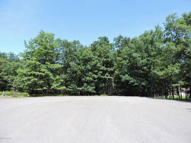 229 Jane Ct, Albrightsville, PA 18210 (MLS #PM-77644) :: Kelly Realty Group