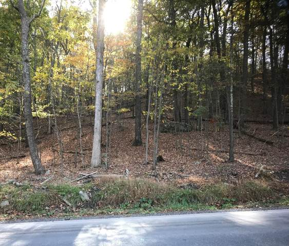 Lot 298 Winona Falls Rd, Bushkill, PA 18324 (#PM-82906) :: Jason Freeby Group at Keller Williams Real Estate