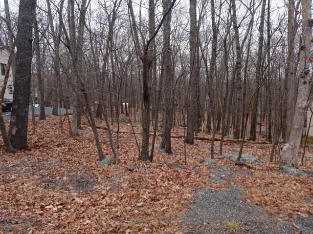 Stonehedge Dr, East Stroudsburg, PA 18301 (MLS #PM-83383) :: RE/MAX of the Poconos