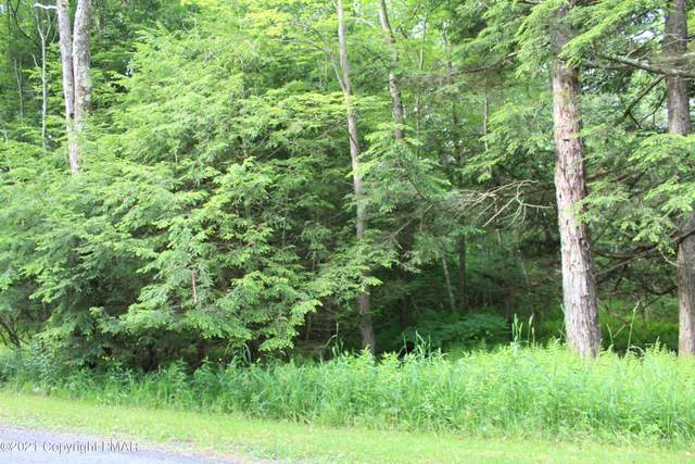10 Driftwood Rd, Blakeslee, PA 18610 (MLS #PM-85526) :: RE/MAX of the Poconos