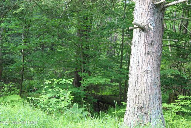 12 Driftwood Rd, Blakeslee, PA 18610 (MLS #PM-85534) :: RE/MAX of the Poconos