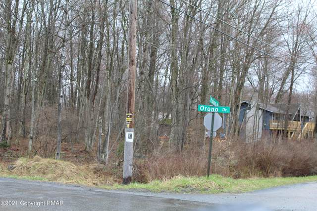 Lenni Trl / Paxinos Dr, Pocono Lake, PA 18347 (#PM-86598) :: Jason Freeby Group at Keller Williams Real Estate