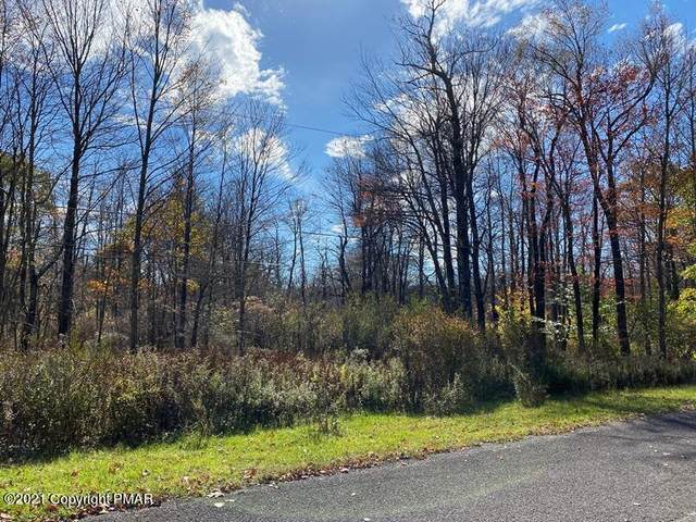 W Route 196 And Centennial Rd, Tobyhanna, PA 18466 (MLS #PM-92345) :: Kelly Realty Group