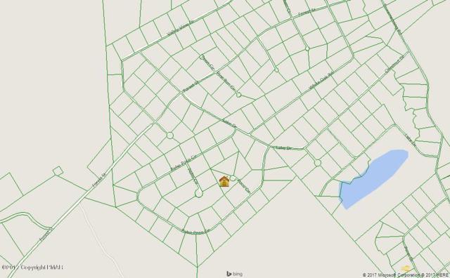 106 Poco Cir, Lehighton, PA 18235 (MLS #PM-43084) :: Keller Williams Real Estate