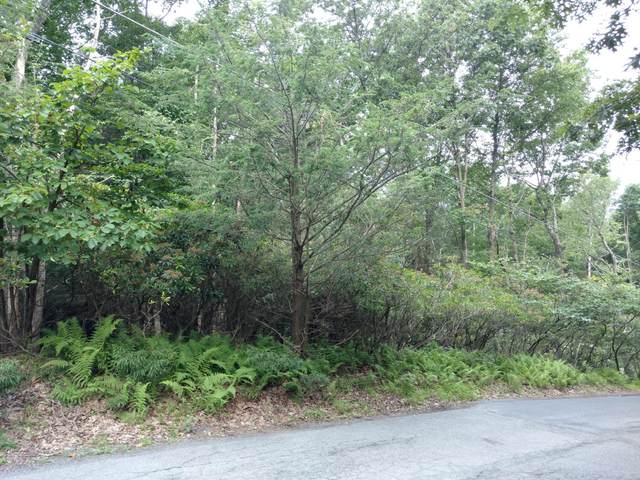 Lot C Hickory St, Cresco, PA 18326 (MLS #PM-48487) :: Kelly Realty Group