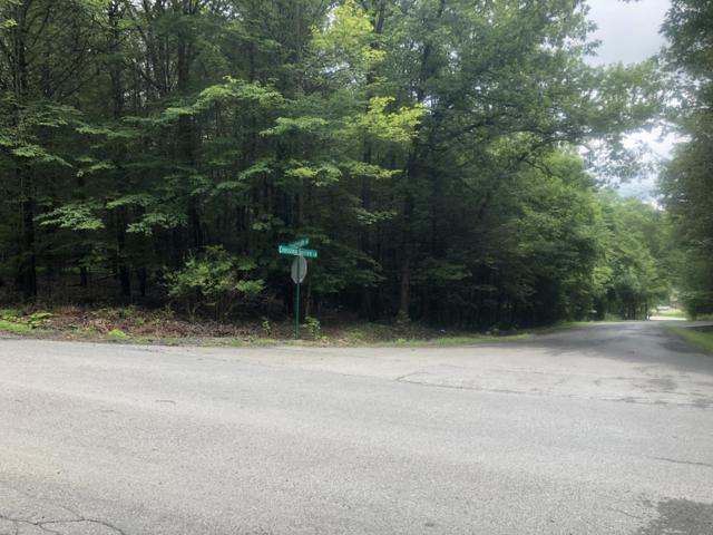 53 Deerfield Dr, Mount Pocono, PA 18344 (MLS #PM-59794) :: Keller Williams Real Estate