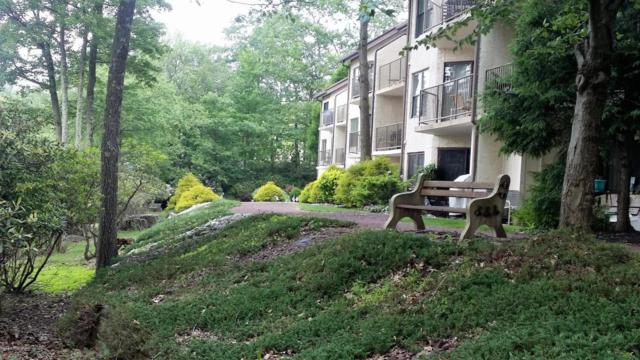55 Midlake Dr #101, Lake Harmony, PA 18624 (MLS #PM-55682) :: RE/MAX of the Poconos