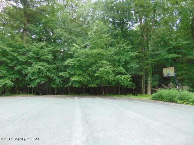 204 Tiger Lily Ln, Saylorsburg, PA 18353 (MLS #PM-48136) :: RE/MAX Results