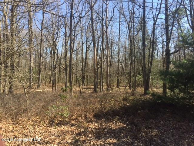 A138 Rosewood Dr, Jim Thorpe, PA 18229 (MLS #PM-56592) :: Keller Williams Real Estate