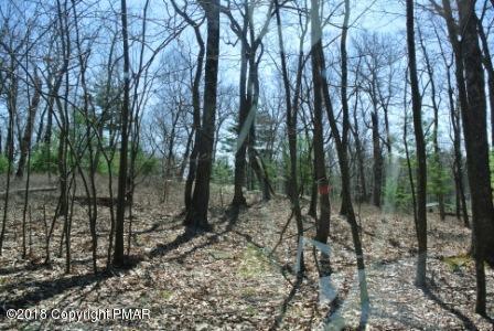 Ptich Pine Rd, Dingmans Ferry, PA 18328 (MLS #PM-57134) :: Keller Williams Real Estate