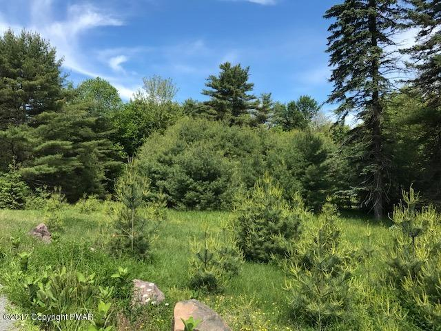 Twp Rd 644 4, Pocono Pines, PA 18350 (MLS #PM-57182) :: RE/MAX of the Poconos