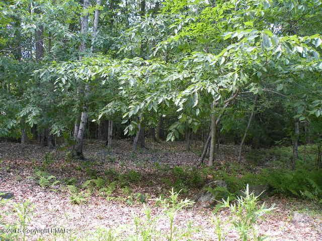 864 Woods End Rd, Pocono Lake, PA 18347 (MLS #PM-58621) :: RE/MAX of the Poconos