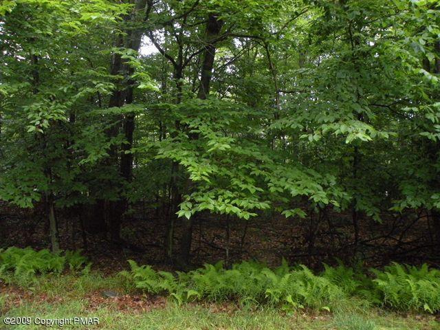 1512 Woods End Rd, Pocono Lake, PA 18347 (MLS #PM-60348) :: RE/MAX Results