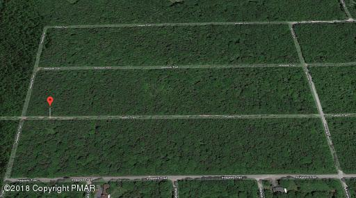 1328 Pueblo Trl, Albrightsville, PA 12864 (MLS #PM-62911) :: RE/MAX of the Poconos