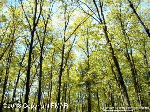 Sunrise Drive & Sugar Pine Dr, Jim Thorpe, PA 18229 (MLS #PM-64005) :: Keller Williams Real Estate