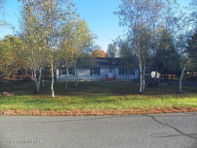 133 Kiowa Ln, Albrightsville, PA 18210 (MLS #PM-66023) :: RE/MAX Results