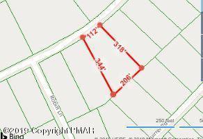 Fox Road, Dingmans Ferry, PA 18328 (MLS #PM-66337) :: RE/MAX of the Poconos