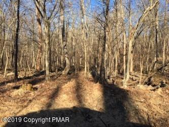 Lot #11B Dogwood Terr Ter, East Stroudsburg, PA 18301 (MLS #PM-66568) :: RE/MAX of the Poconos