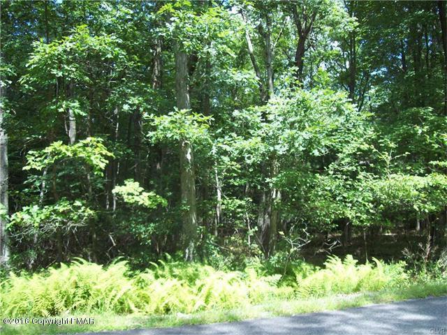 91 Wintergreen Ln, Jim Thorpe, PA 18229 (MLS #PM-66744) :: Keller Williams Real Estate