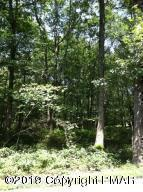 Dogwood Dr, Jim Thorpe, PA 18229 (MLS #PM-67442) :: Keller Williams Real Estate