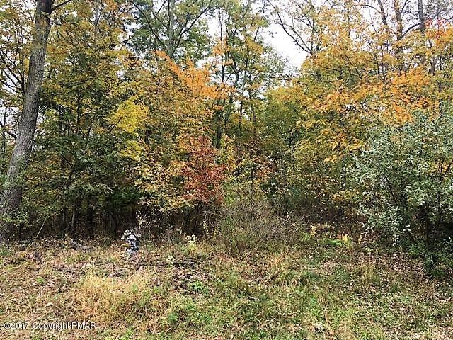 27 Jacoby Run Rd, Upper Mt. Bethel, PA 18343 (MLS #PM-68687) :: Keller Williams Real Estate
