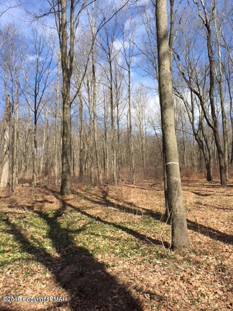 T 625 #1, Bartonsville, PA 18321 (MLS #PM-69318) :: RE/MAX of the Poconos