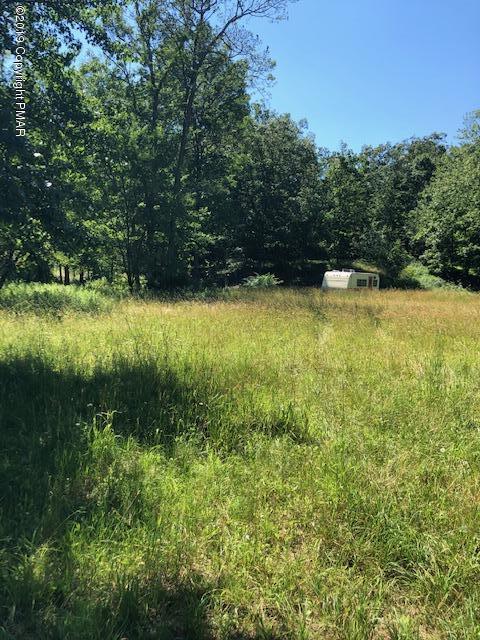 1153 Sylvan Ln, East Stroudsburg, PA 18301 (MLS #PM-69873) :: Keller Williams Real Estate