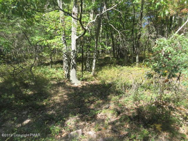 Lot 2255 Seneca Rd, Albrightsville, PA 18210 (MLS #PM-69924) :: RE/MAX of the Poconos