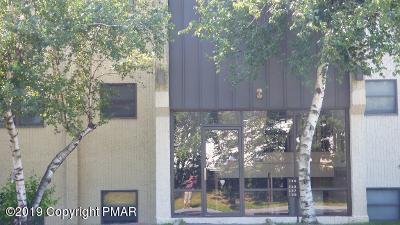 146 Foxfire Dr, Mount Pocono, PA 18344 (MLS #PM-70245) :: Keller Williams Real Estate