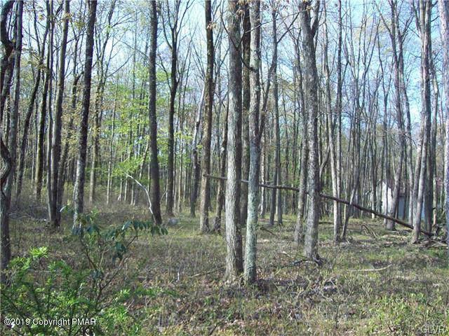 79 Bayberry Rd, Jim Thorpe, PA 18229 (MLS #PM-72515) :: Keller Williams Real Estate