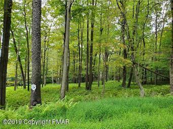 28 Oak Leaf Ln, Pocono Lake, PA 18347 (MLS #PM-72617) :: RE/MAX of the Poconos