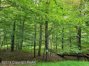 34 Tall Oak Dr, Pocono Lake, PA 18347 (MLS #PM-72623) :: Kelly Realty Group