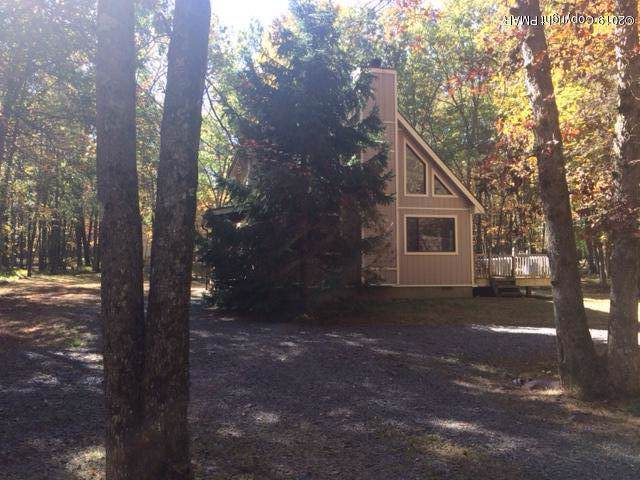 24 Pound Ln, Albrightsville, PA 12864 (MLS #PM-72829) :: Keller Williams Real Estate