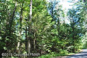 121 Ledgeway Dr, Dingmans Ferry, PA 18328 (MLS #PM-73342) :: Kelly Realty Group