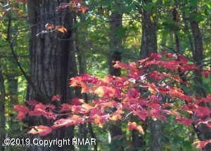 Lot B1006 Wychewood Rd, Albrightsville, PA 18210 (MLS #PM-73613) :: Keller Williams Real Estate