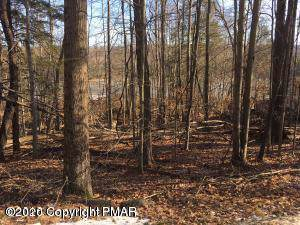 Chestnut  Lane, Bushkill, PA 18324 (MLS #PM-75015) :: RE/MAX of the Poconos