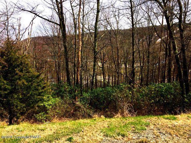81 High Mountain Ln, Tannersville, PA 18372 (MLS #PM-76947) :: RE/MAX of the Poconos