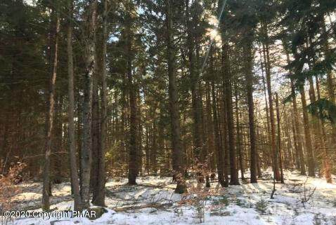 Lot 511 E Forest Rd, Pocono Lake, PA 18347 (MLS #PM-80994) :: Kelly Realty Group