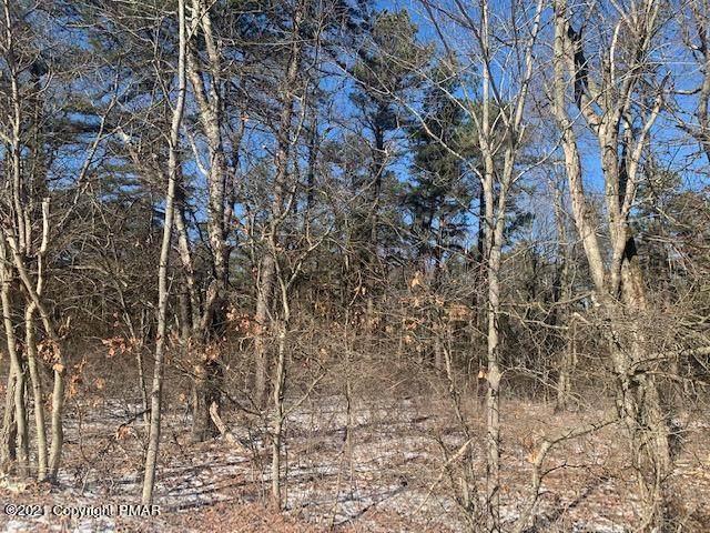 Lot E341 Wild Creek Dr, Jim Thorpe, PA 18229 (MLS #PM-84654) :: RE/MAX of the Poconos