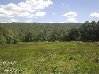 3 Lots Center Ave, Jim Thorpe, PA 18229 (MLS #PM-86431) :: Kelly Realty Group