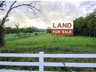 Lot 220 Bluebird Dr, Bushkill, PA 18324 (MLS #PM-91557) :: Smart Way America Realty