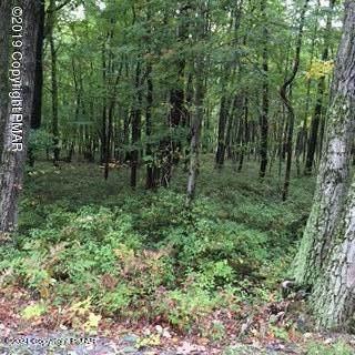 Turkey Foot Trail, East Stroudsburg, PA 18302 (MLS #PM-91953) :: Kelly Realty Group