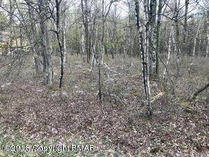 Lot 39 Forest Hill Dr, Blakeslee, PA 18610 (MLS #PM-92521) :: Smart Way America Realty