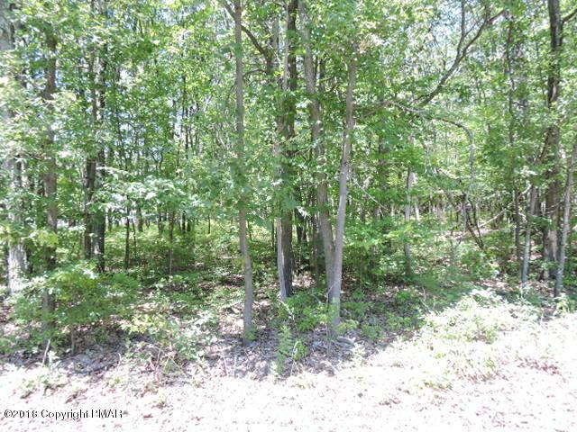 Lot 51 Rushmore Rd, Effort, PA 18330 (MLS #PM-57030) :: RE/MAX of the Poconos